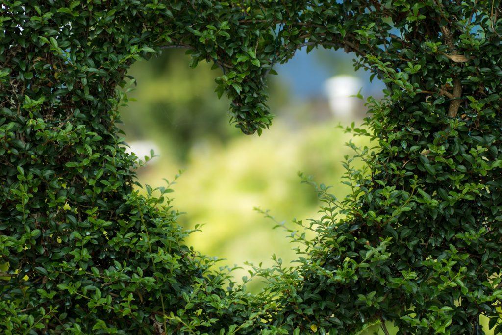So gewinnen Sie das Herz einer ukrainischen Frau! 8 Schritte zu ihrem Herzen.